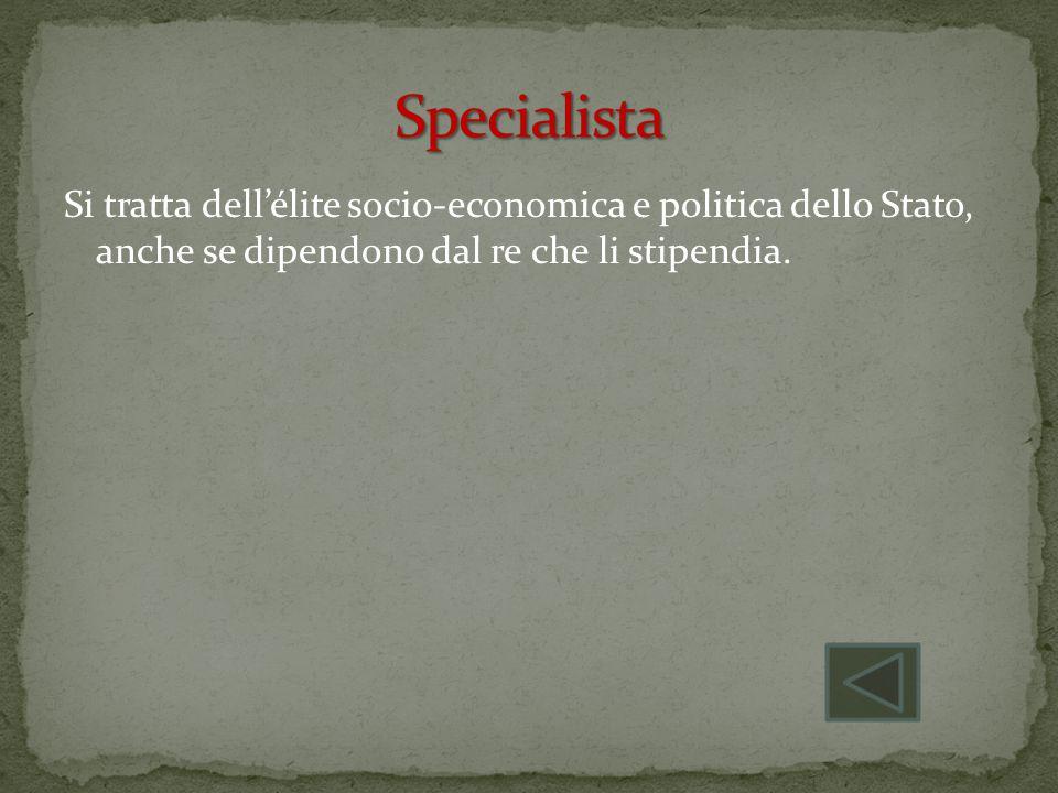 Specialista Si tratta dell'élite socio-economica e politica dello Stato, anche se dipendono dal re che li stipendia.