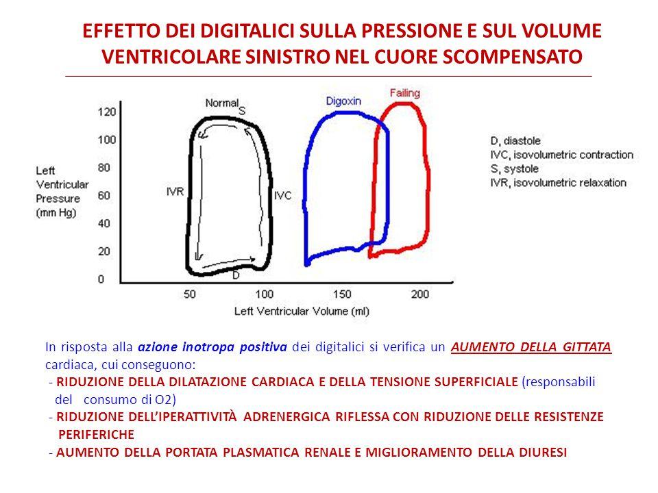 Effetto dei digitalici sulla pressione e sul volume
