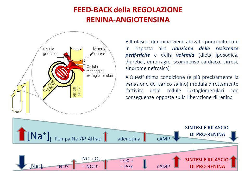 FEED-BACK della REGOLAZIONE