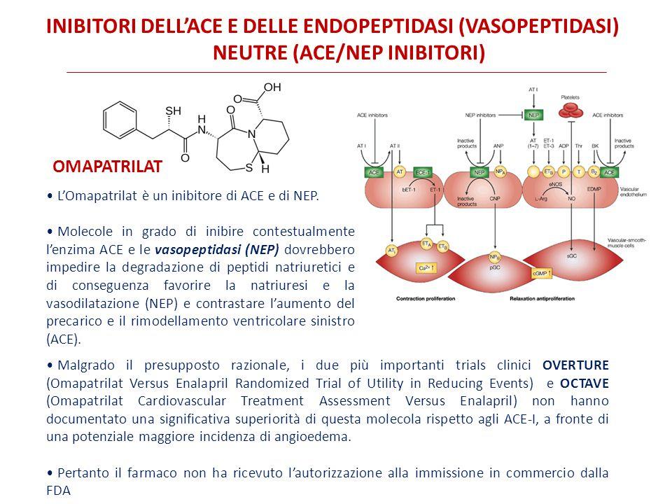 Inibitori DELL'ACE e delle Endopeptidasi (vasopeptidasi) Neutre (ACE/NEP inibitori)