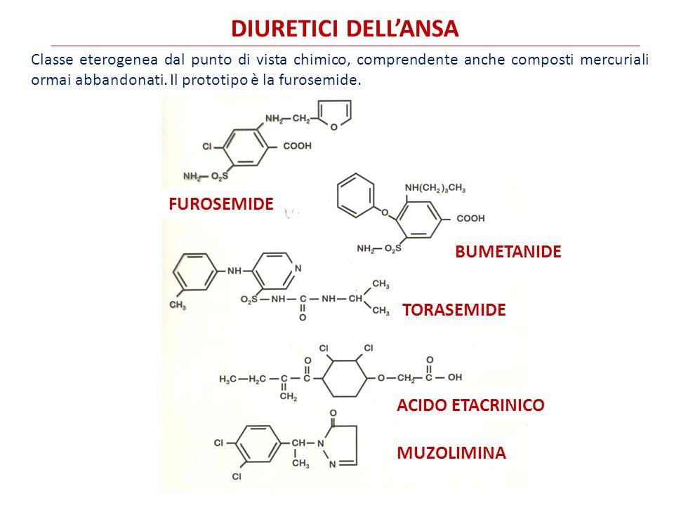DIURETICI DELL'ANSA FUROSEMIDE BUMETANIDE TORASEMIDE ACIDO ETACRINICO