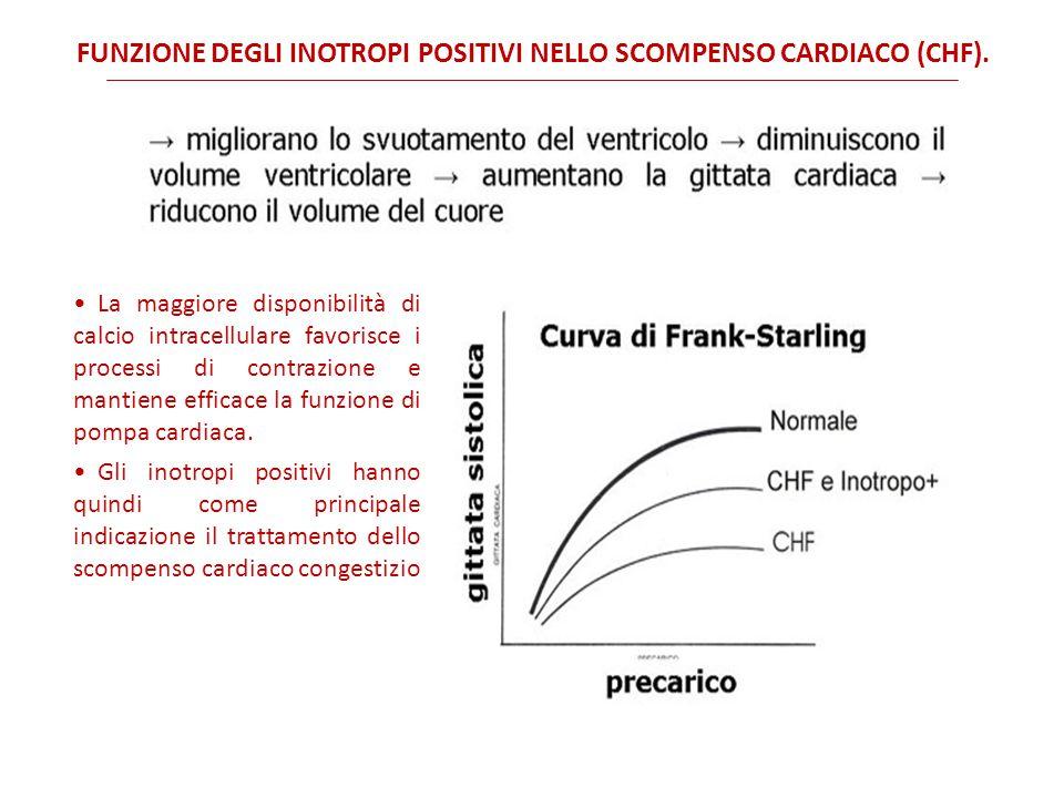 Funzione degli inotropi positivi nello scompenso cardiaco (CHF).
