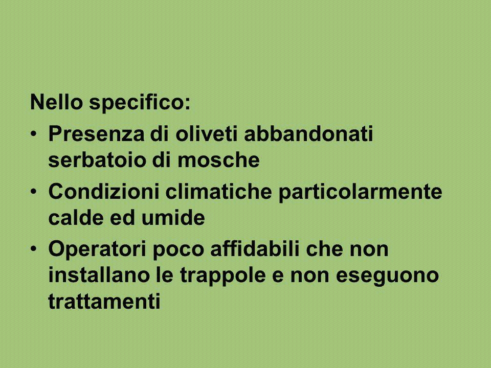 Nello specifico: Presenza di oliveti abbandonati serbatoio di mosche. Condizioni climatiche particolarmente calde ed umide.