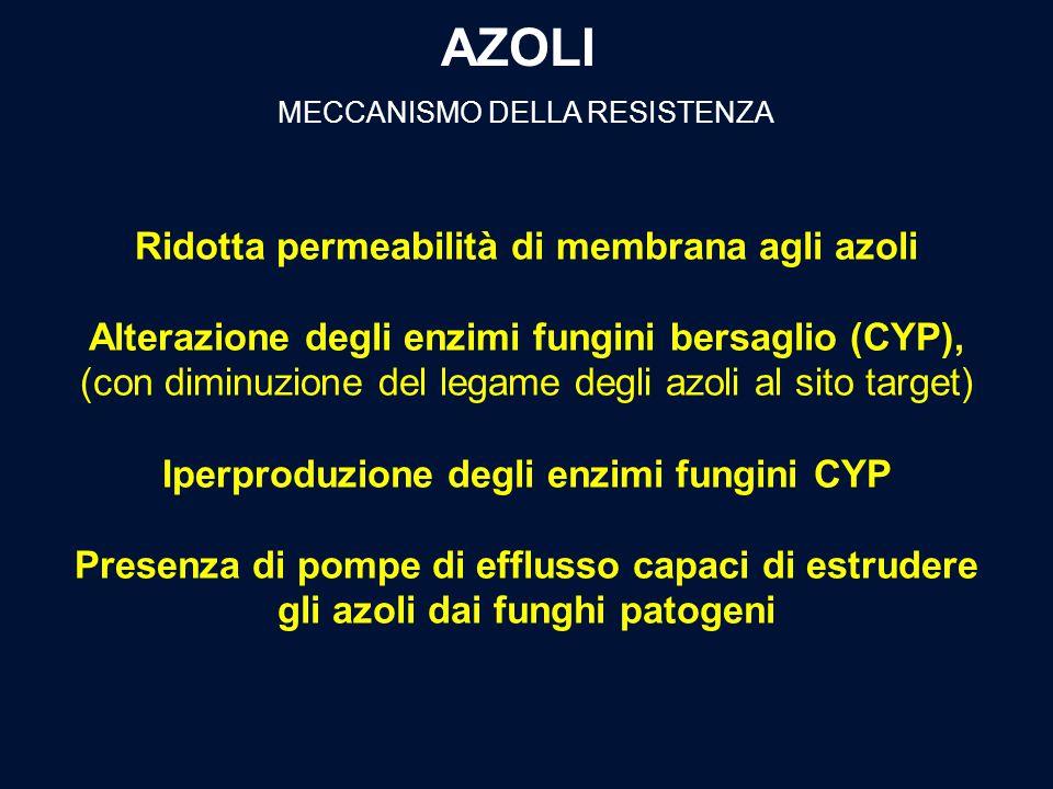 AZOLI MECCANISMO DELLA RESISTENZA