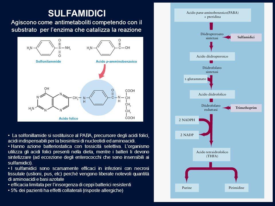 SULFAMIDICI Agiscono come antimetaboliti competendo con il substrato per l'enzima che catalizza la reazione.