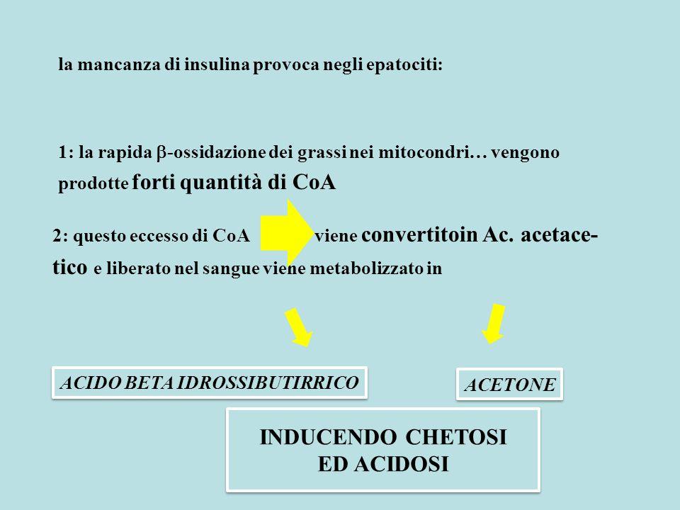 INDUCENDO CHETOSI ED ACIDOSI