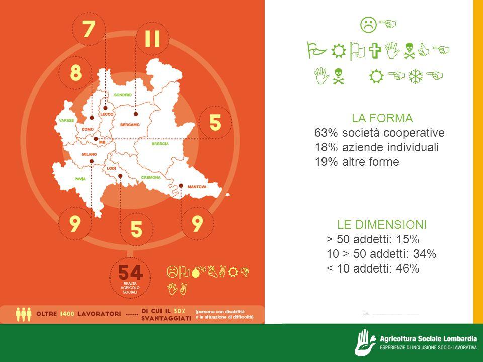 LE PROVINCE IN RETE LOMBARDIA LA FORMA 63% società cooperative