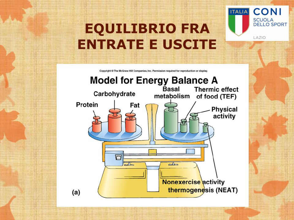 EQUILIBRIO FRA ENTRATE E USCITE