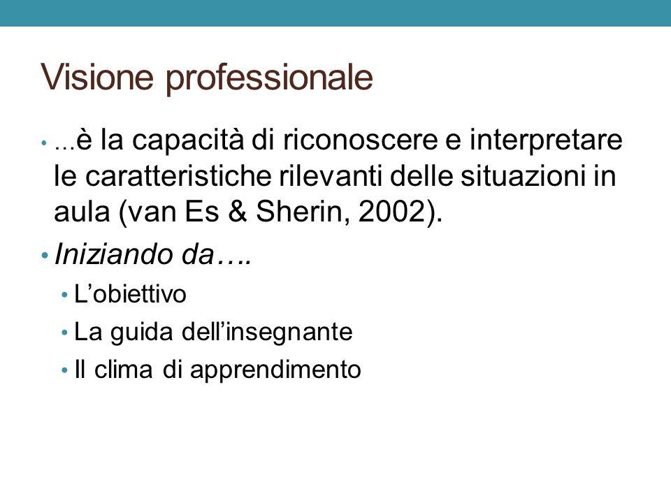 Visione professionale