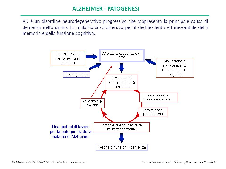 Alzheimer - Patogenesi