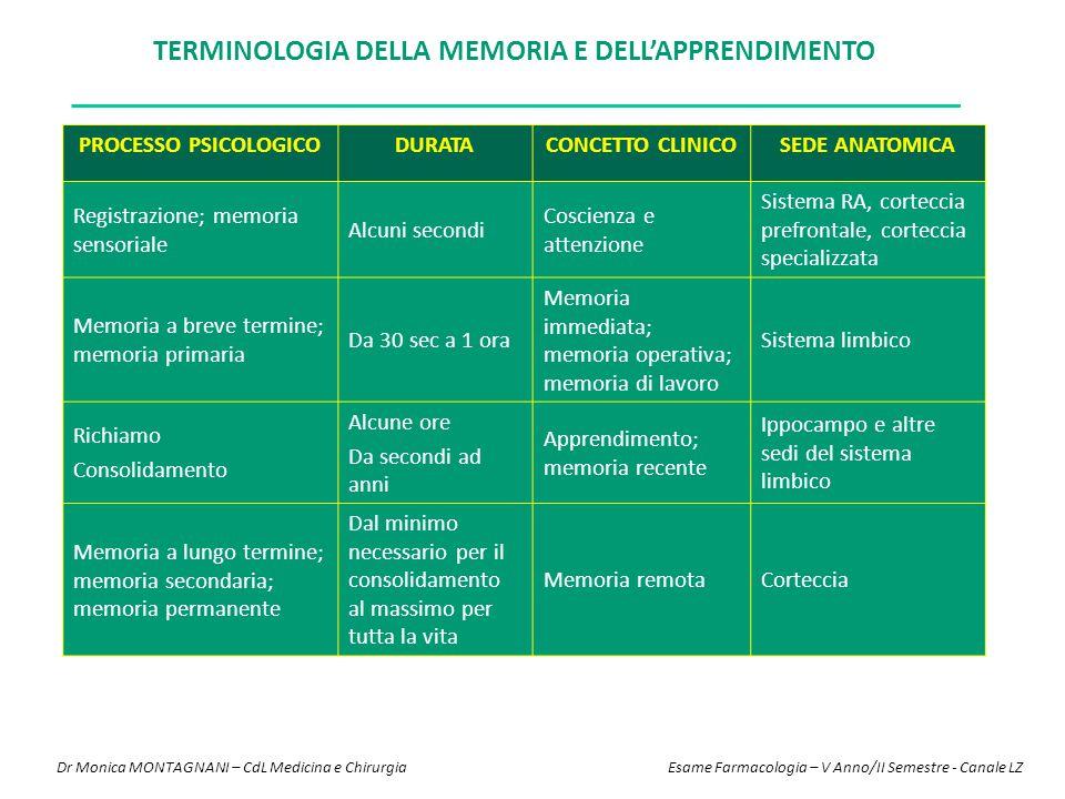 Terminologia della memoria e dell'apprendimento