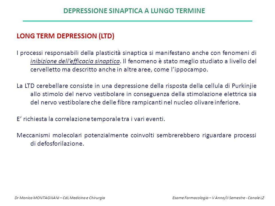 Depressione sinaptica a lungo termine