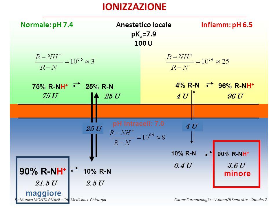 IONIZZAZIONE 90% R-NH+ Infiamm: pH 6.5 Normale: pH 7.4
