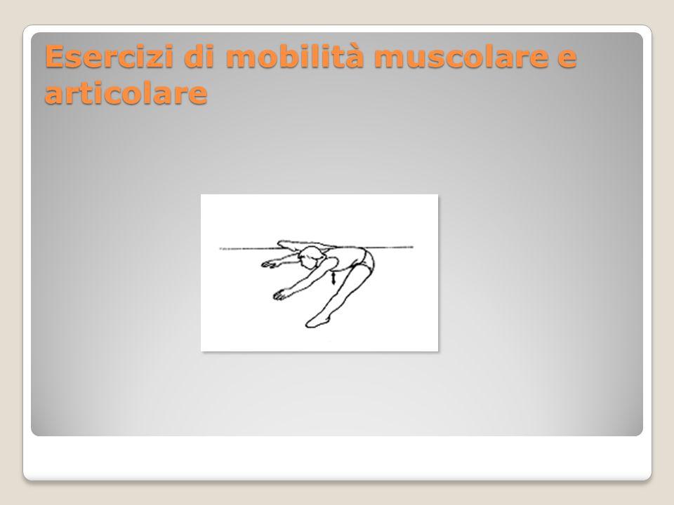 Esercizi di mobilità muscolare e articolare