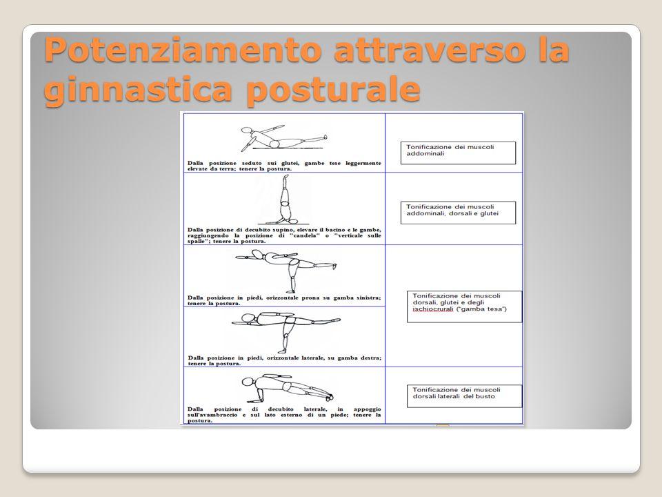 Potenziamento attraverso la ginnastica posturale