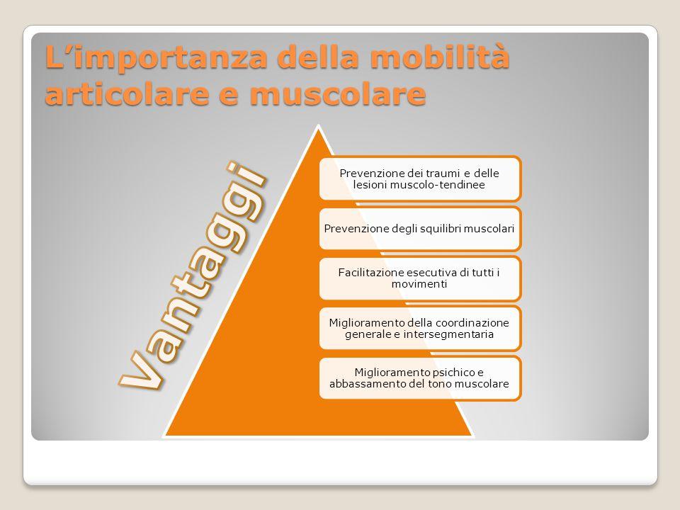 L'importanza della mobilità articolare e muscolare