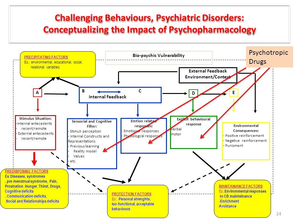 Challenging Behaviours, Psychiatric Disorders: Conceptualizing the Impact of Psychopharmacology