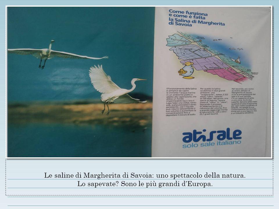 Le saline di Margherita di Savoia: uno spettacolo della natura.