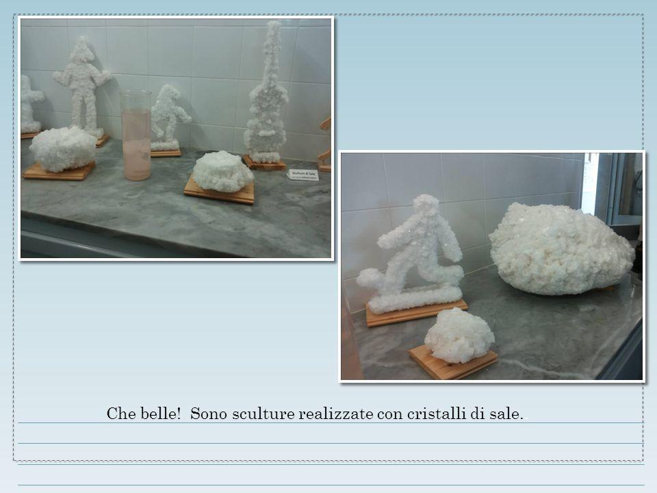 Che belle! Sono sculture realizzate con cristalli di sale..