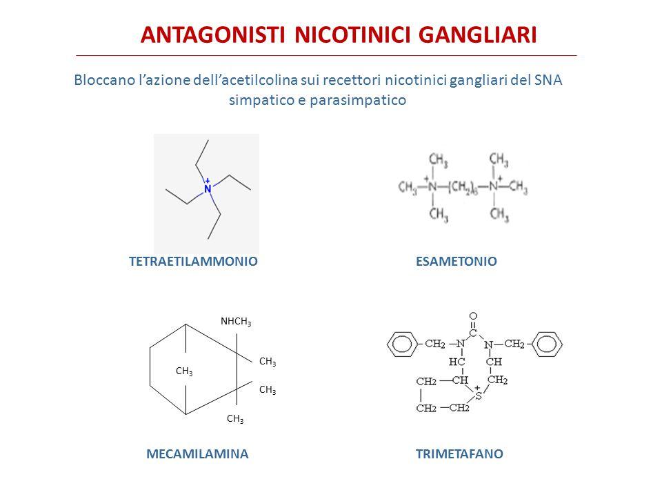 ANTAGONISTI NICOTINICI GANGLIARI