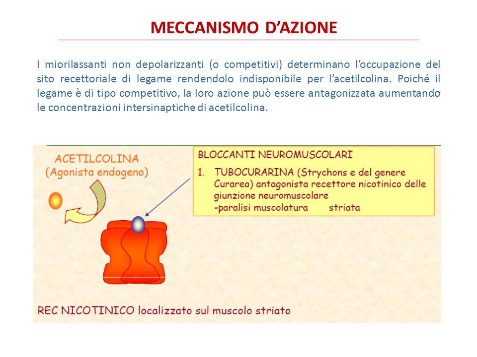 MECCANISMO D'AZIONE