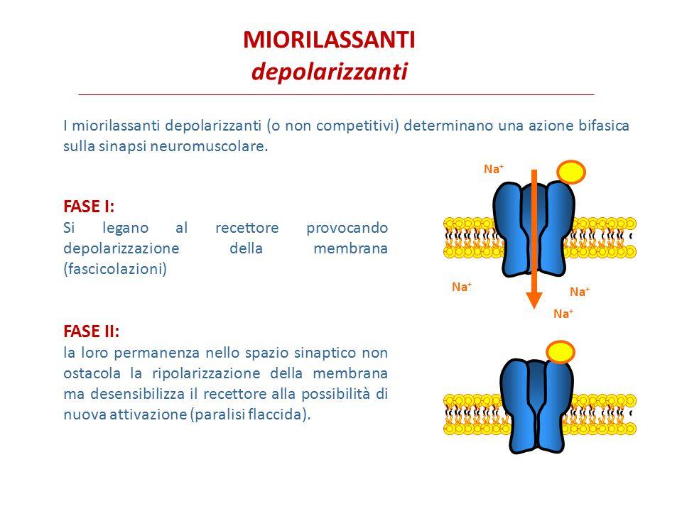 MIORILASSANTI depolarizzanti