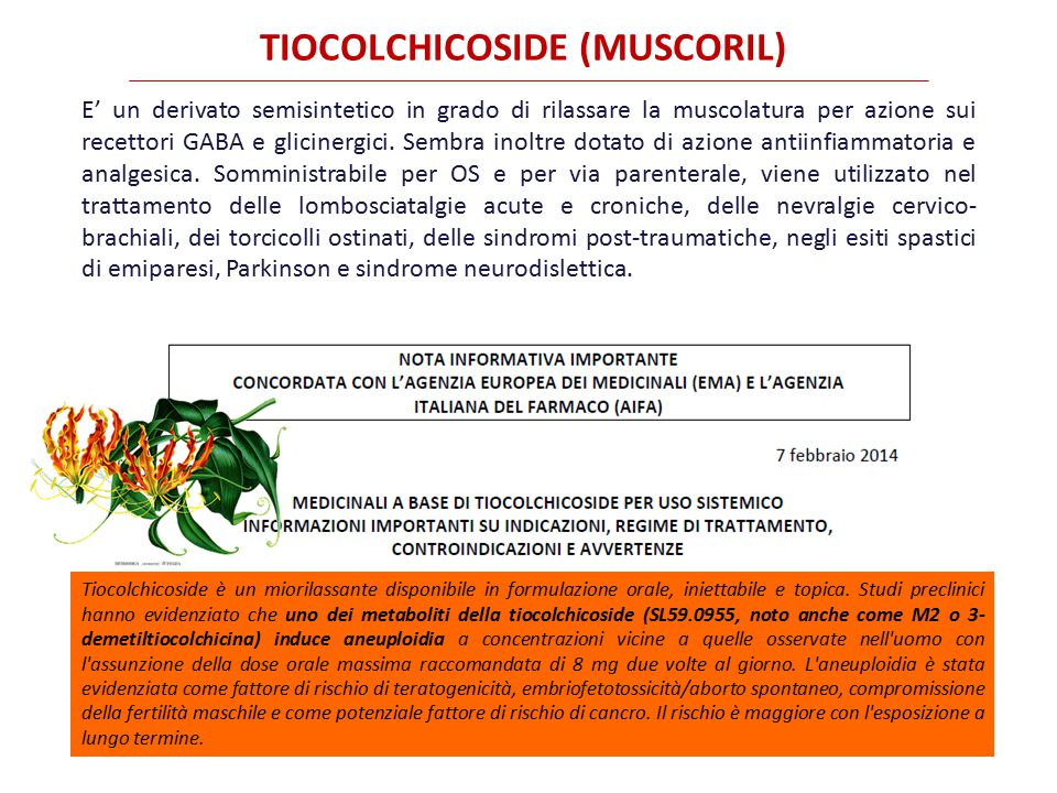TIOCOLCHICOSIDE (MUSCORIL)