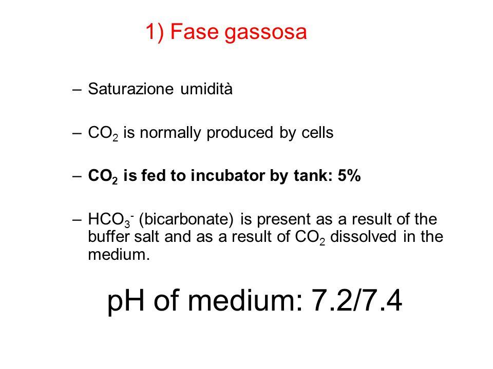 pH of medium: 7.2/7.4 1) Fase gassosa Saturazione umidità