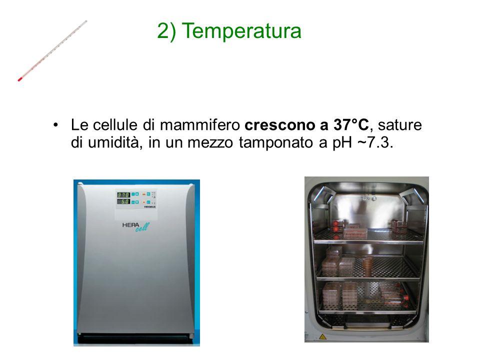 2) Temperatura Le cellule di mammifero crescono a 37°C, sature di umidità, in un mezzo tamponato a pH ~7.3.