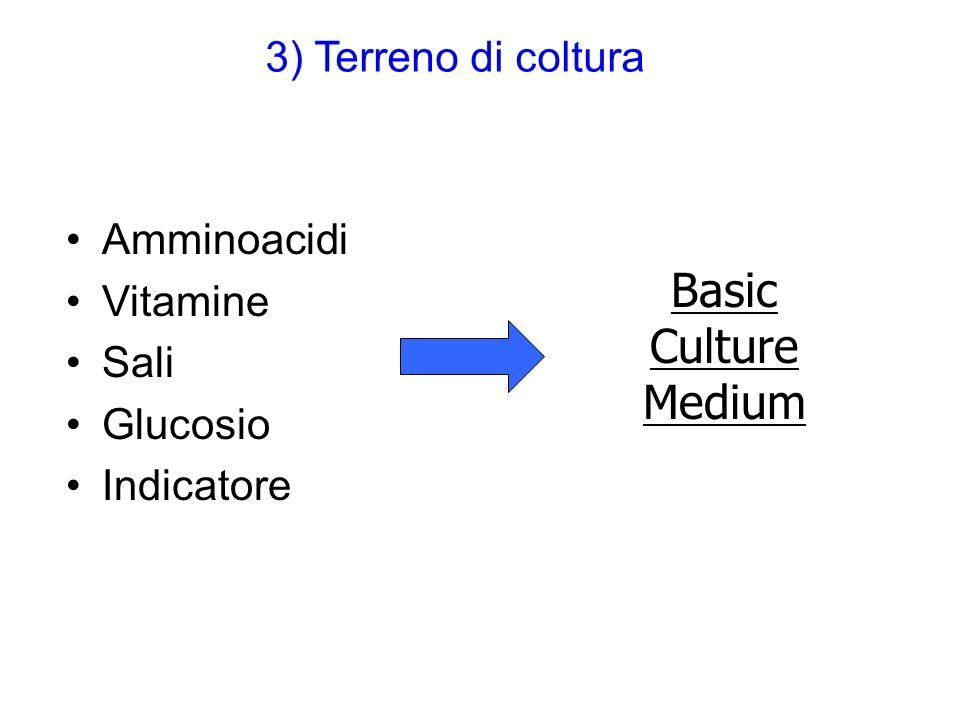 Basic Culture Medium 3) Terreno di coltura Amminoacidi Vitamine Sali
