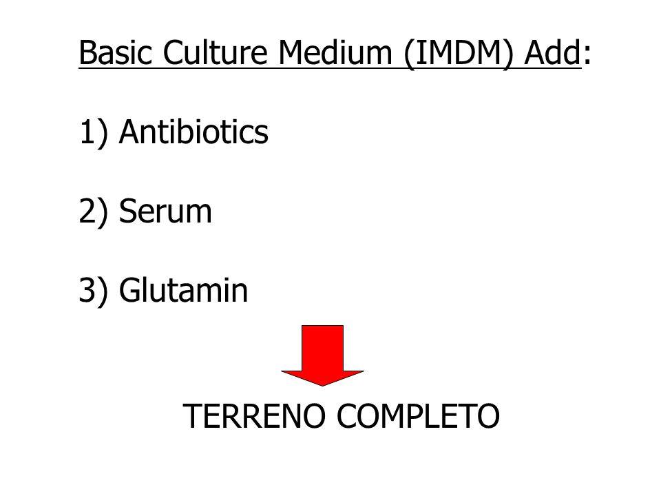Basic Culture Medium (IMDM) Add: