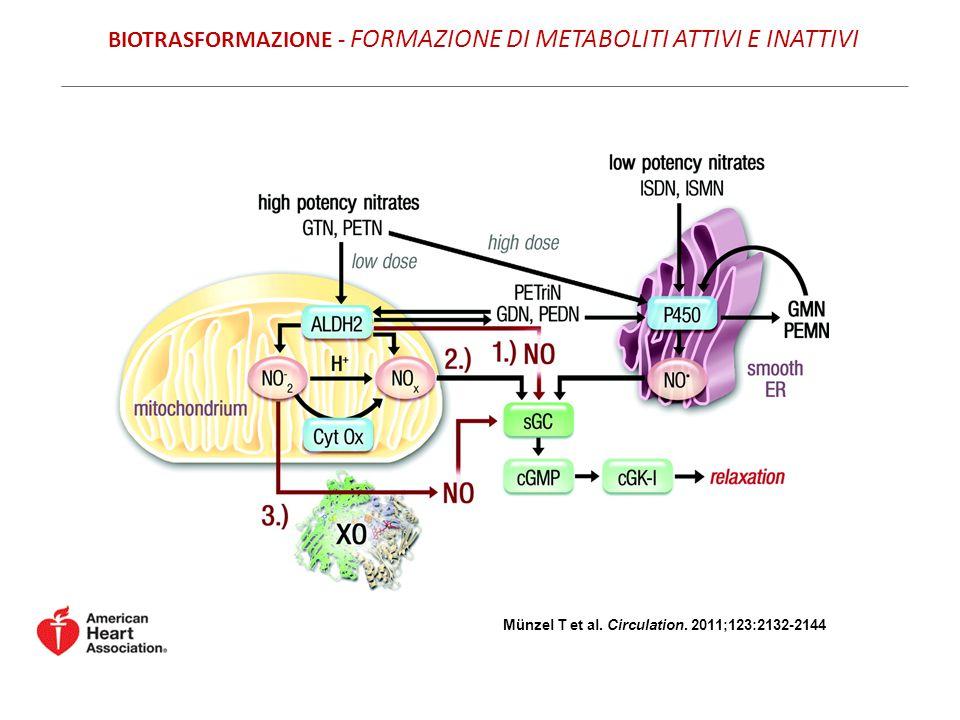 BIOTRASFORMAZIONE - FORMAZIONE DI METABOLITI ATTIVI E INATTIVI