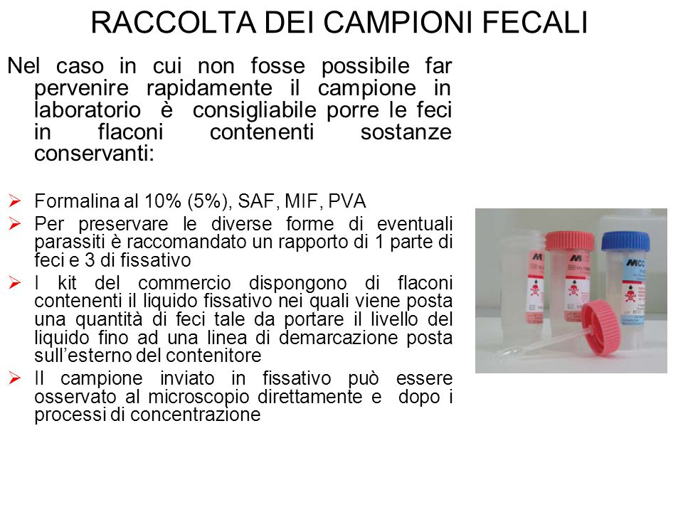 RACCOLTA DEI CAMPIONI FECALI