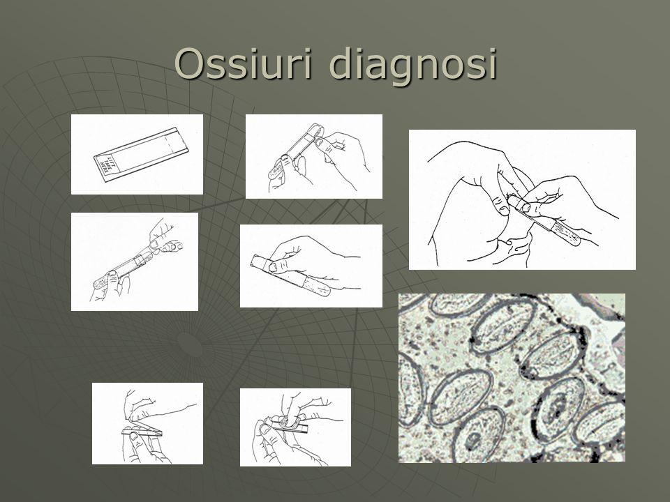 Ossiuri diagnosi