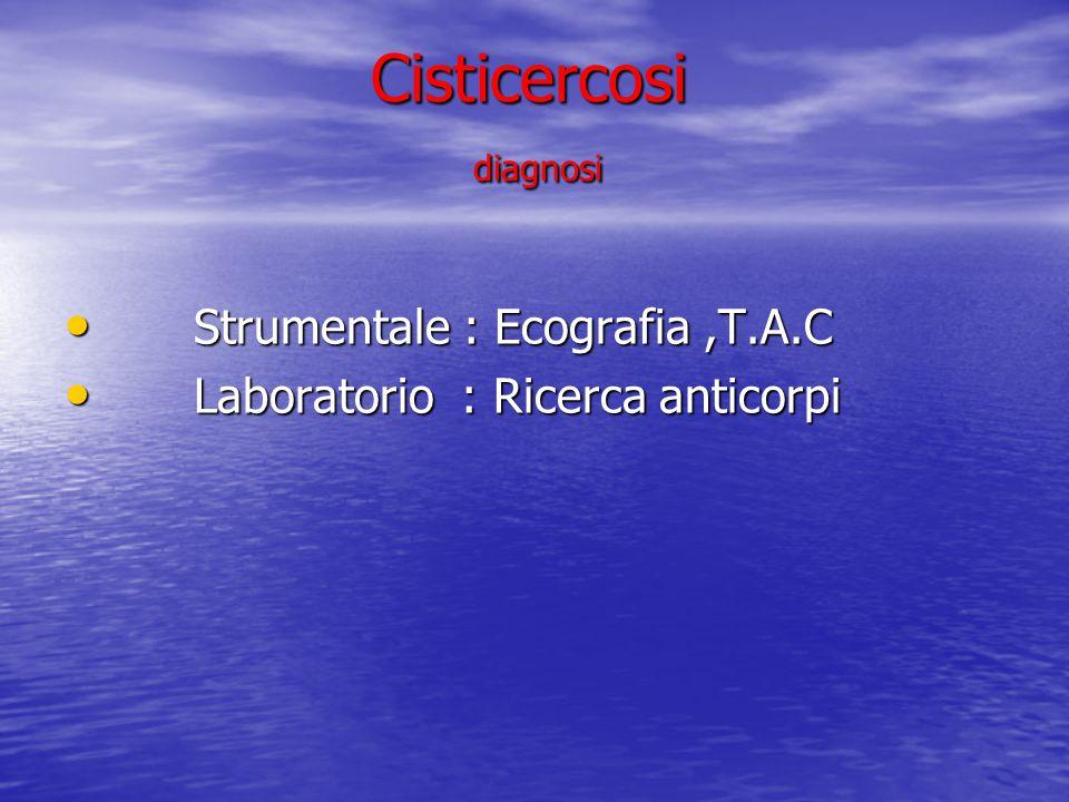 Cisticercosi diagnosi
