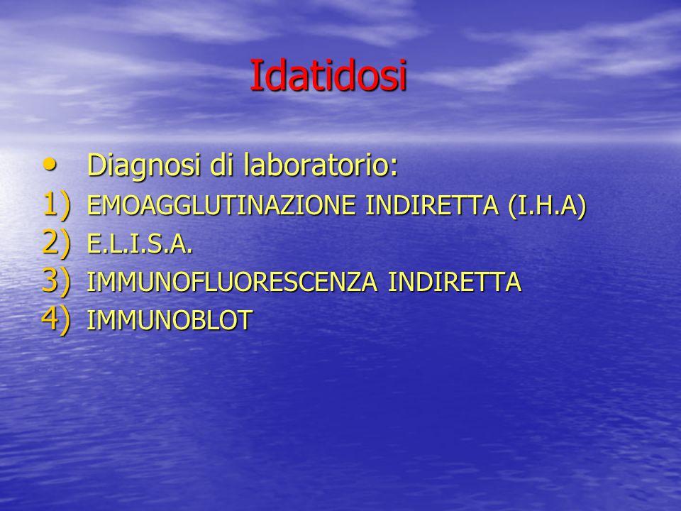 Idatidosi Diagnosi di laboratorio: EMOAGGLUTINAZIONE INDIRETTA (I.H.A)