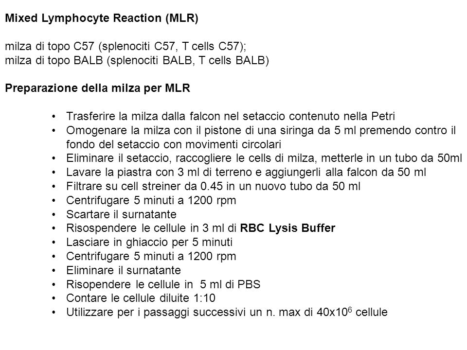 Mixed Lymphocyte Reaction (MLR)