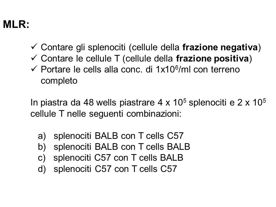 MLR: Contare gli splenociti (cellule della frazione negativa)