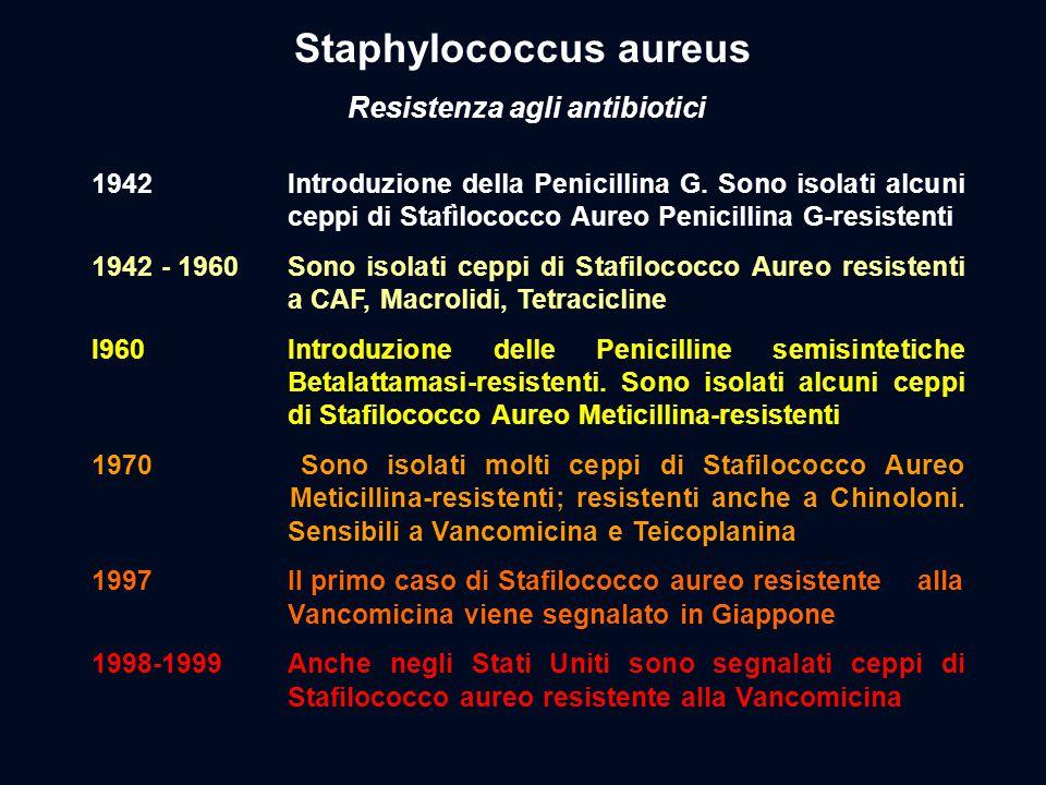 Staphylococcus aureus Resistenza agli antibiotici