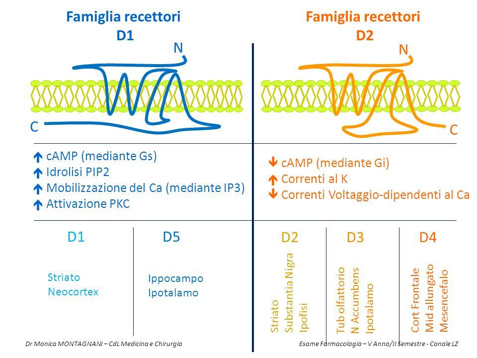 Famiglia recettori D1 Famiglia recettori D2