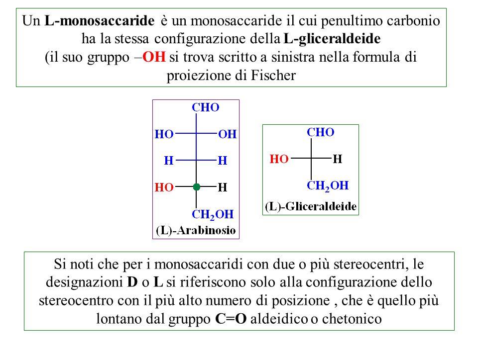 Un L-monosaccaride è un monosaccaride il cui penultimo carbonio ha la stessa configurazione della L-gliceraldeide