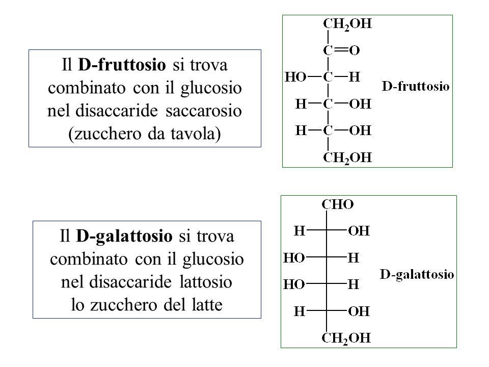 Il D-fruttosio si trova combinato con il glucosio