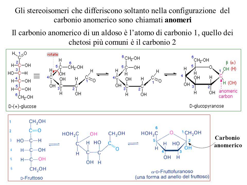 Gli stereoisomeri che differiscono soltanto nella configurazione del carbonio anomerico sono chiamati anomeri