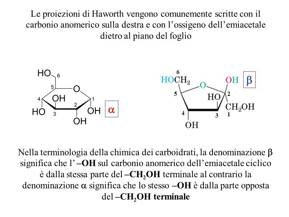 Le proiezioni di Haworth vengono comunemente scritte con il carbonio anomerico sulla destra e con l'ossigeno dell'emiacetale dietro al piano del foglio