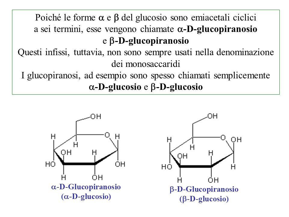 Poiché le forme a e b del glucosio sono emiacetali ciclici a sei termini, esse vengono chiamate a-D-glucopiranosio e b-D-glucopiranosio
