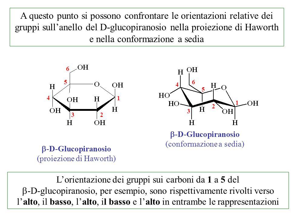 A questo punto si possono confrontare le orientazioni relative dei gruppi sull'anello del D-glucopiranosio nella proiezione di Haworth e nella conformazione a sedia