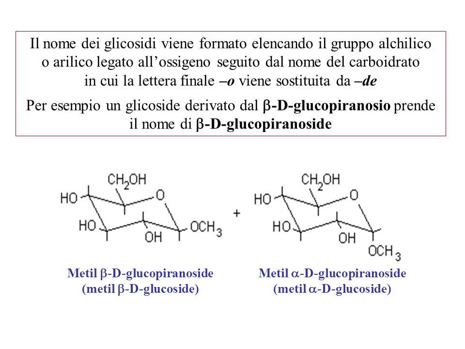 Il nome dei glicosidi viene formato elencando il gruppo alchilico o arilico legato all'ossigeno seguito dal nome del carboidrato in cui la lettera finale –o viene sostituita da –de