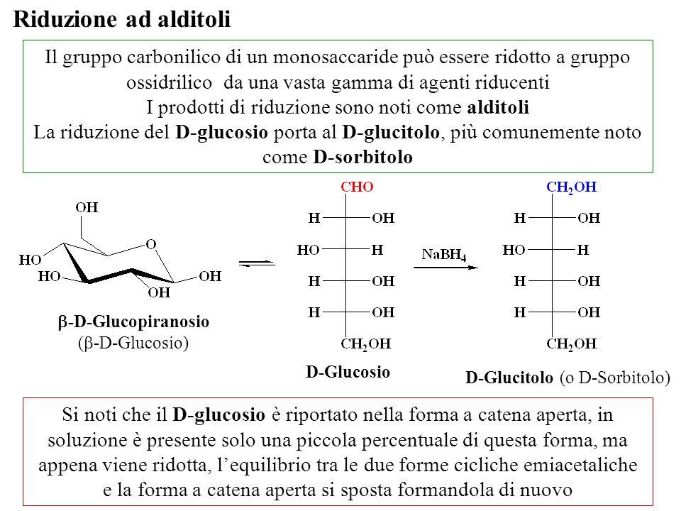 Riduzione ad alditoli Il gruppo carbonilico di un monosaccaride può essere ridotto a gruppo ossidrilico da una vasta gamma di agenti riducenti.