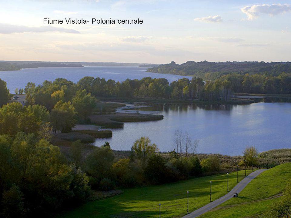 Fiume Vistola- Polonia centrale