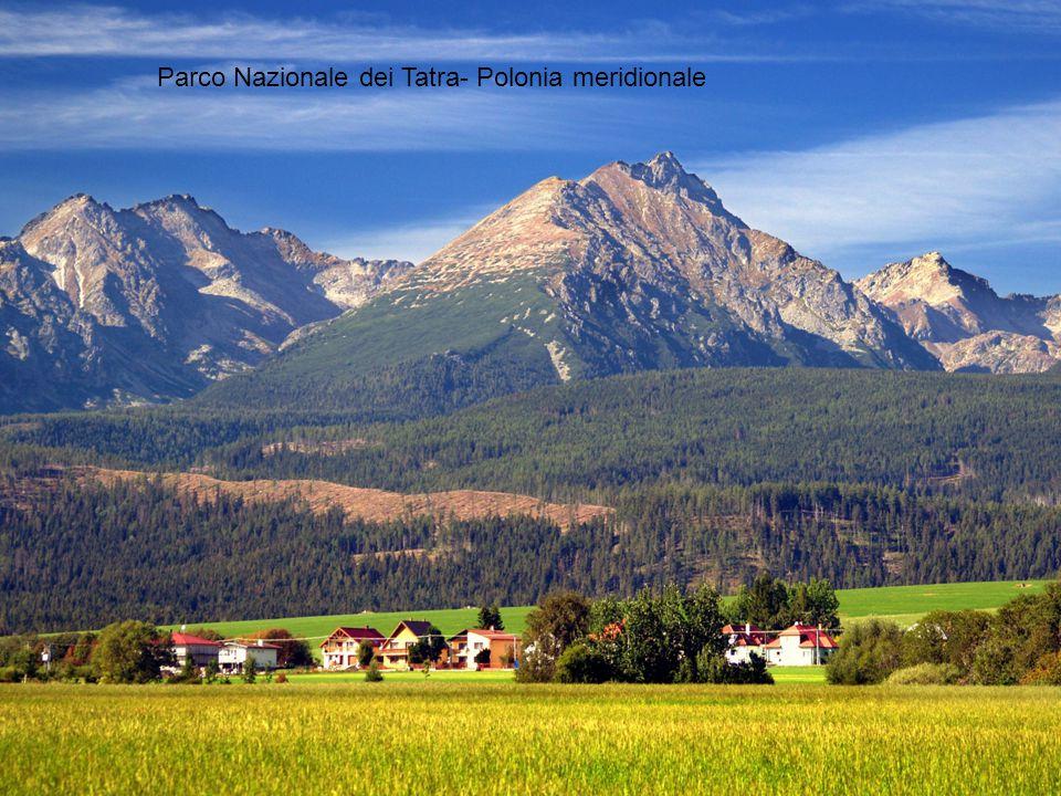 Parco Nazionale dei Tatra- Polonia meridionale